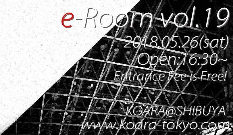 e-Room Vol.19